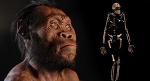 Homo naledi, la nueva especie de homínido