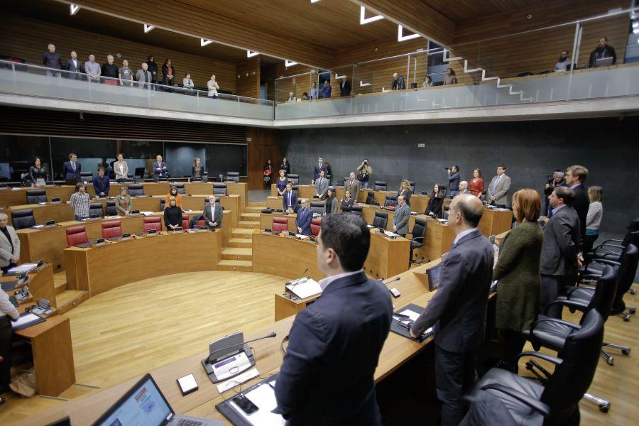 El Parlamento de Navarra guarda un minuto de silencio por Aitziber Sarasola Jaca