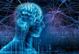 ePilepsy, una base de datos neurológicos para tratar la epilepsia