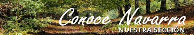 CONOCE NAVARRA