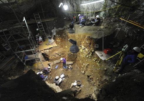 Investigadores británicos analizarán el genoma microbiano de Atapuerca