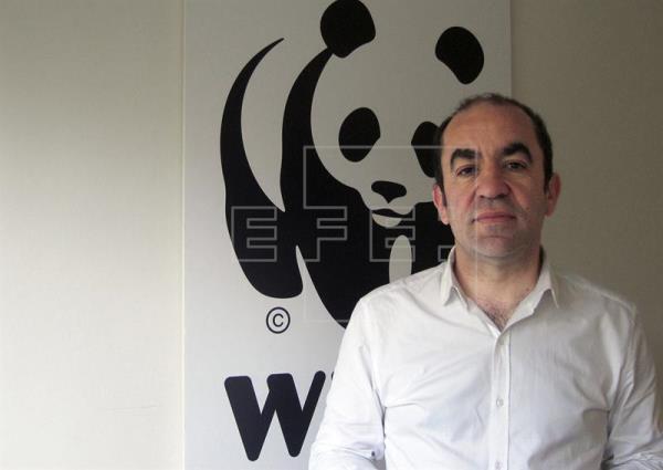 Del Olmo (WWF): A los políticos les pedimos coherencia, estructura y ambición