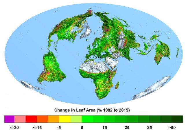 La concentración de CO2 ha hecho que la Tierra sea ahora más verde que hace tres décadas