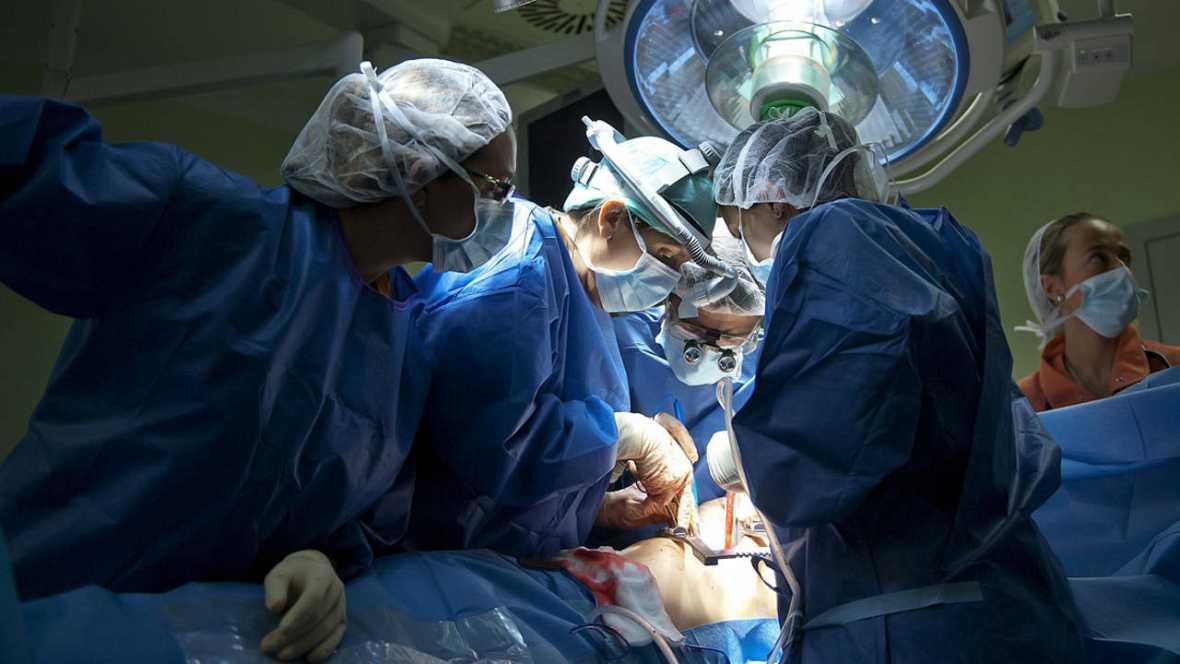El futuro de los trasplantes pasa por las células madre y los órganos creados con impresoras 3D