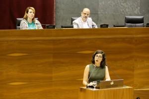 Laura Pérez (G-P-Podemos)
