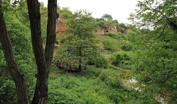Arqueólogos griegos creen haber hallado la tumba de Aristóteles