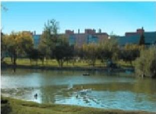 AGENDA: 24 de septiembre, en Mendillorri, 'Pamplona es verde'