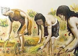 Los primeros agricultores en Europa se cruzaron con los cazadores locales