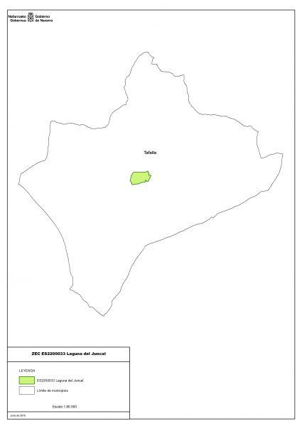Designada zona especial de conservación la Laguna del Juncal de Tafalla (Navarra)