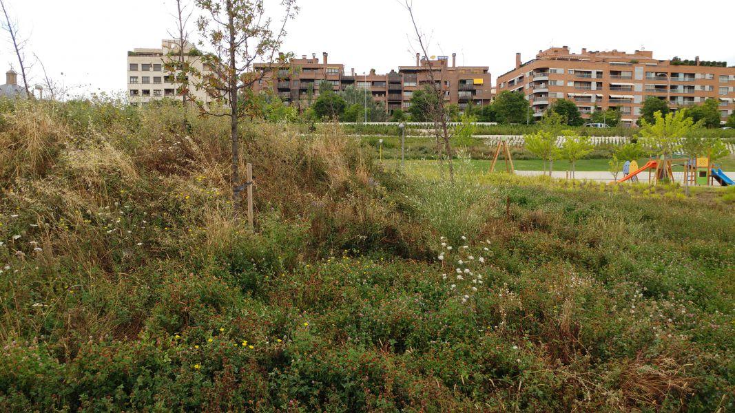 Pamplona tendrá una nueva escuela infantil