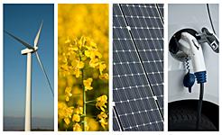 Navarra, por la aplicación de nuevos modelos económicos sostenibles