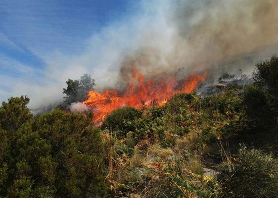 Al incendio del Valle del Jerte se une un nuevo fuego en Sierra de Gata