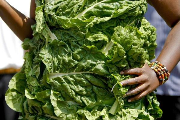 La lucha contra el cambio climático, una cuestión de dieta personal