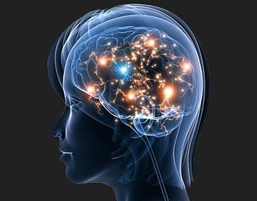 Científicos consiguen rescatar recuerdos olvidados a través de estimulación magnética