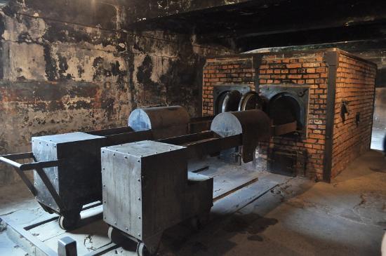 Auschwitz pide documentos privados sobre vigilantes SS para conocer historia