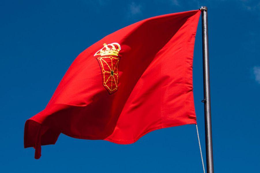 3 de junio en defensa de la bandera de Navarra, la de todos los navarros