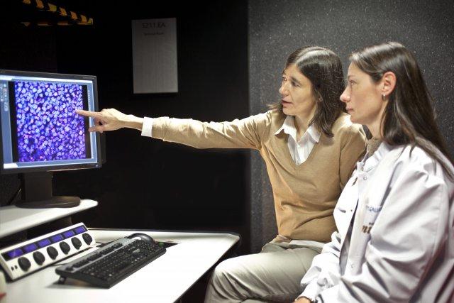Medicina personalizada de precisión, el futuro de la asistencia sanitaria