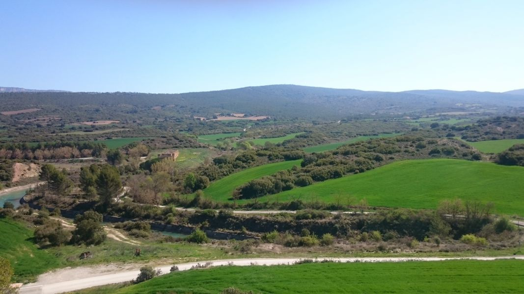 Abonado ya el anticipo de los pagos directos de la PAC en Navarra