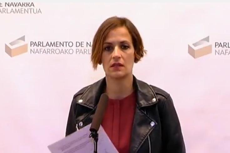 """El PSN critica la """"racanería"""" de los Presupuestos del Estado 2017 con Navarra"""