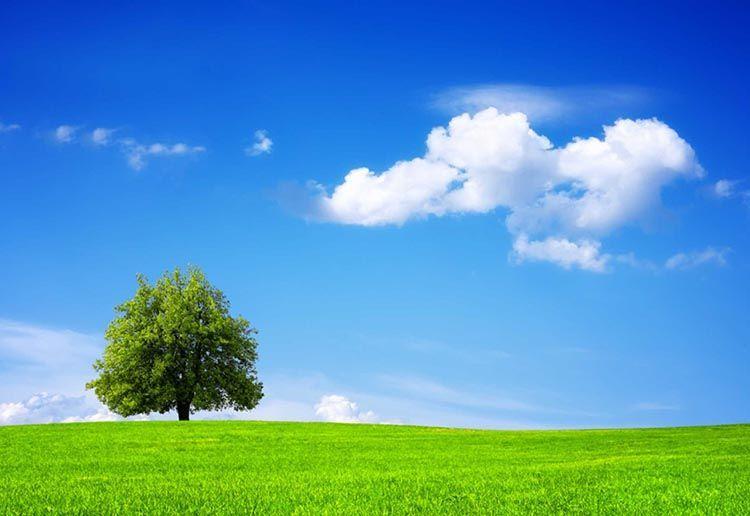 Navarra contará nuevas herramientas del fondo europeo Next Generation UE para medir cambio climático
