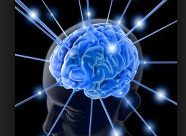 Identifican 40 nuevos genes relacionados con la inteligencia