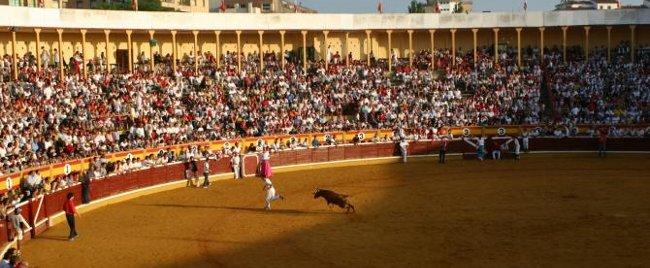 Muere una vaquilla en la suelta tras el encierro de Tudela