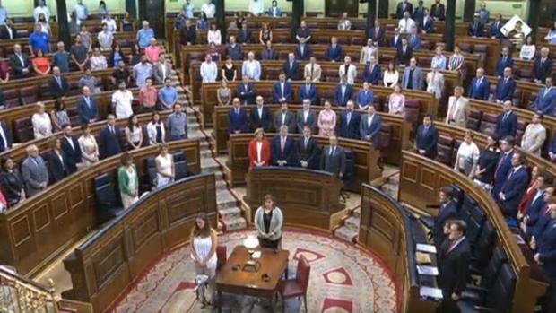 El Congreso guarda un minuto de silencio en memoria de Miguel Ángel Blanco con la ausencia de Bildu