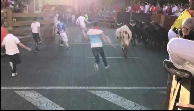 Un herido por asta de toro en el tercer encierro de Tudela