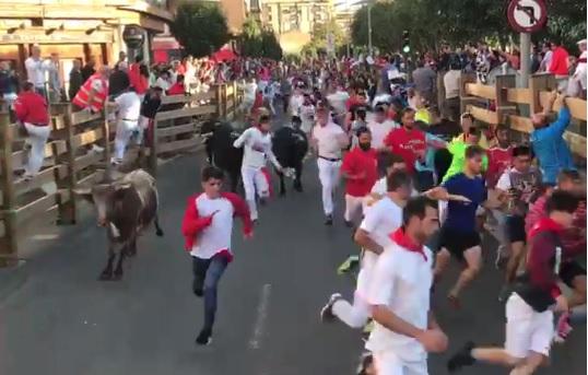 Limpio y rápido segundo encierro del día grande de las Fiestas de Santa Ana en Tudela