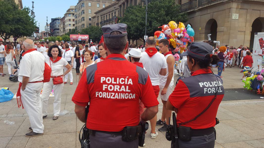 La Policía Foral a debate en el Ayuntamiento de Pamplona