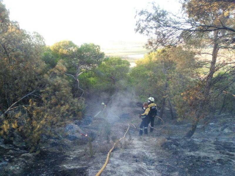 Reavivan los rescoldos del incendio de Falces