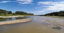 El Gobierno de Navarra reitera al Gobierno Central incluirel tramo navarro de la cuenca del Ebro enlas medidas urgentes para la sequía