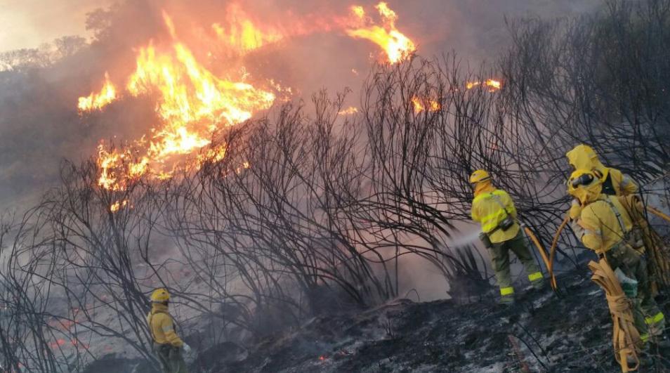 El incendio de La Granada (Huelva) supera el medio millar de desalojados