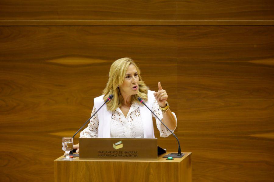 Navarrómetro´17 PP: Se consolida el PP en Navarra
