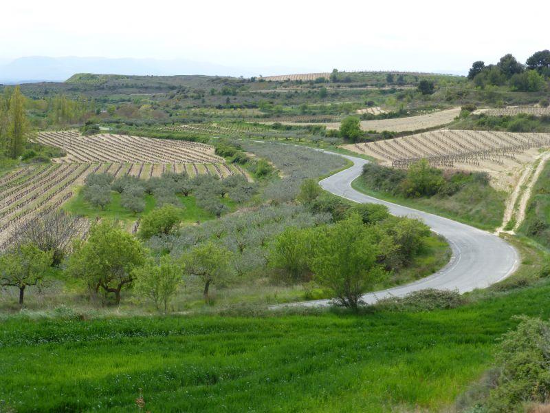 3,5 millones destinados para la contratación de seguros agrarios combinados del Plan 2021
