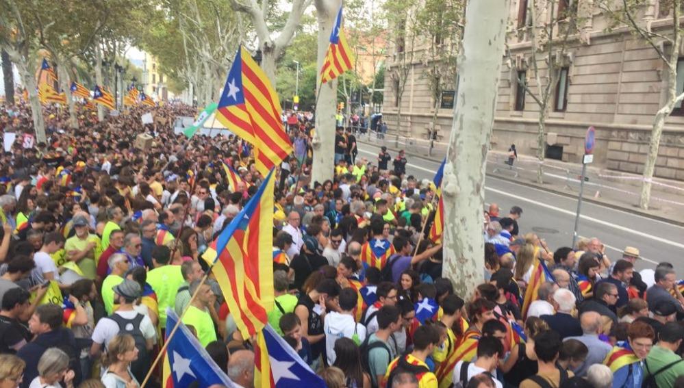 Unas 20.000 personas protestan por detenciones ante el Palacio de Justicia TSJC