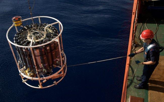 El importante y activo papel de los virus del océano