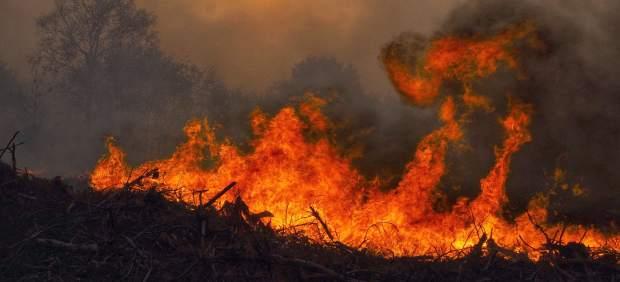 Los servicios de extinción reducen a 27 los incendios en Asturias