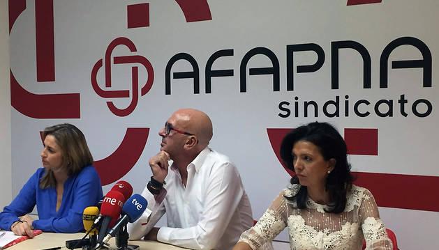 AFAPNA, satisfecho con la sentencia del euskera, pide revisar las vacantes