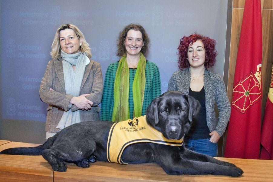 Presentada una guía sobre perros de asistencia, primera que se edita en España
