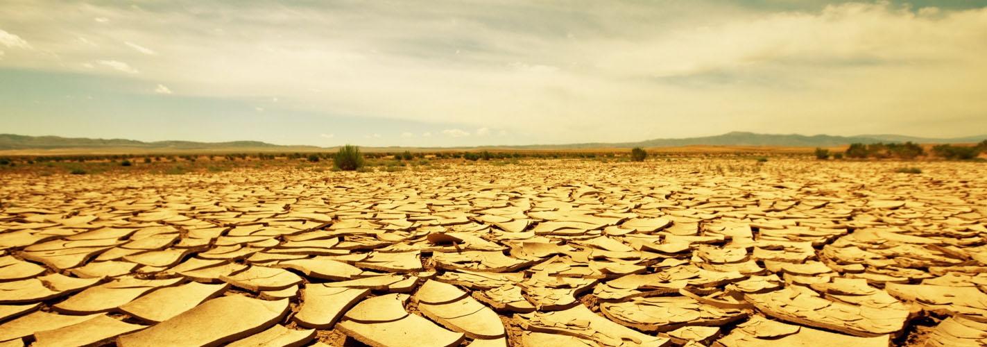Emergencia Climática: menos declaraciones y más acciones hacia el decrecimiento