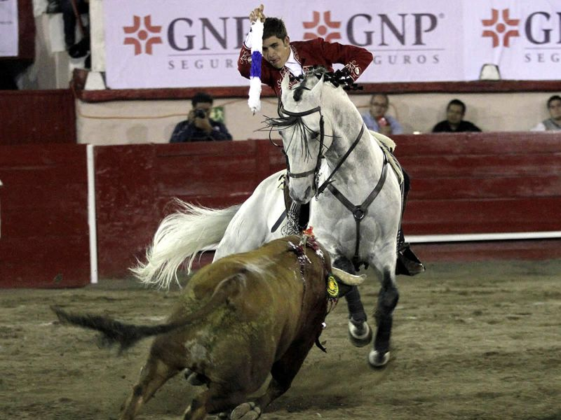 Sólo una vuelta al ruedo en Monterrey para Guillermo Hermoso de Mendoza