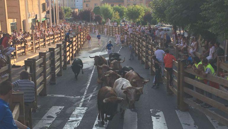 Cuatro heridos leves en el primer encierro de las fiestas de Tudela
