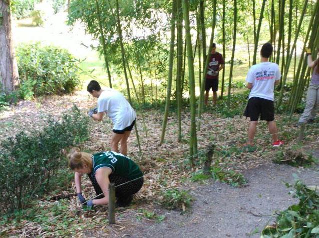 Jóvenes comprometidos con medioambiente, de voluntariado en Urbasa-Andía