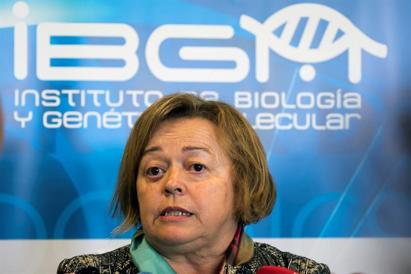 Rosa Menéndez (CSIC): sin más recursos, en 5 años la ciencia será insostenible