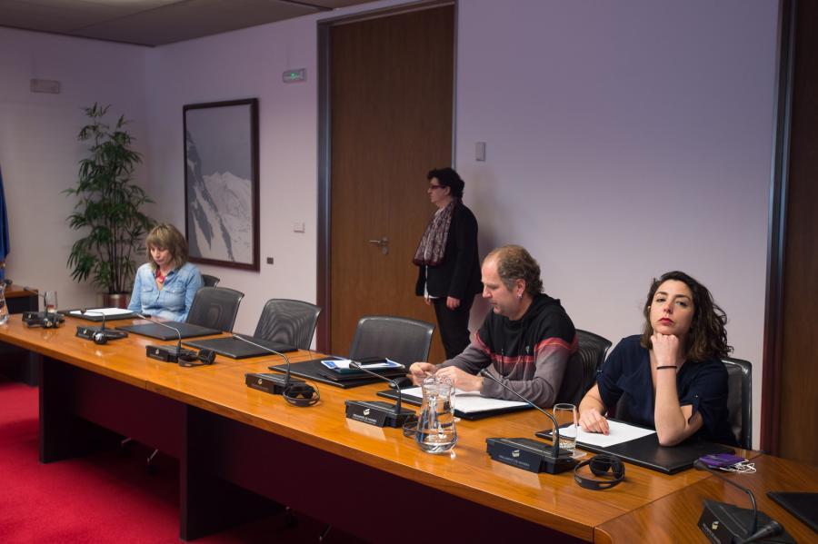 La Comisión Especial emplaza a revisar el estatus legal del euskera
