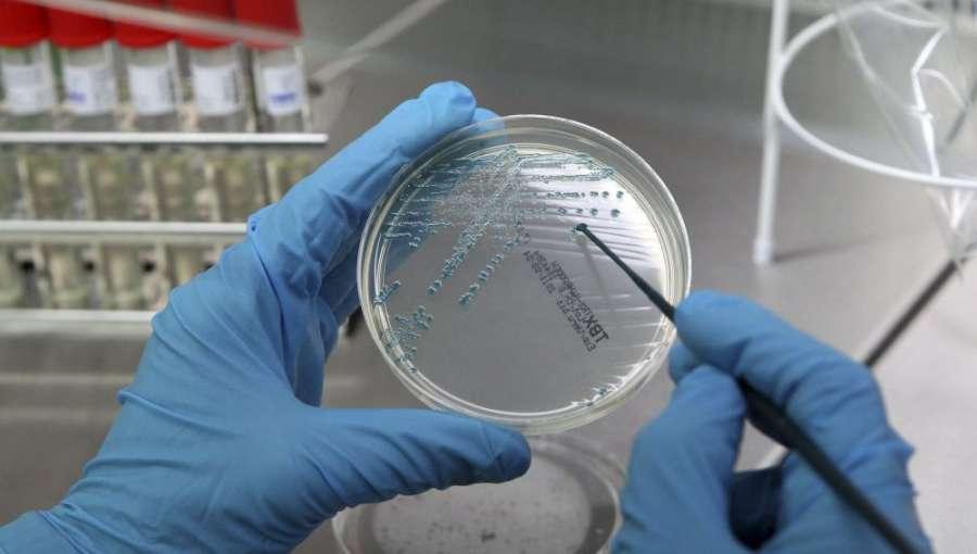 La inmunoterapia y estudio macrobioma señalan el salto cualitativo en cáncer