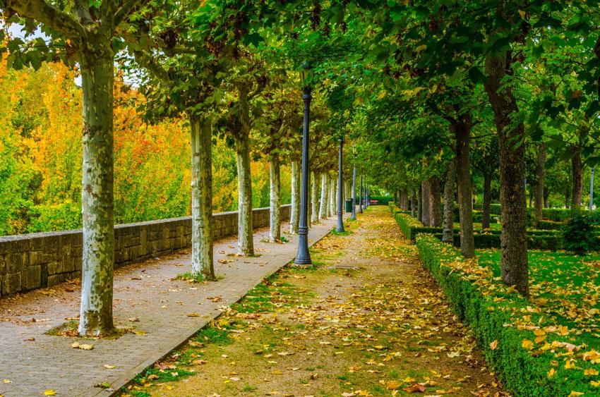 Pamplona promoverá baños públicos autolimpiables en parques y jardines