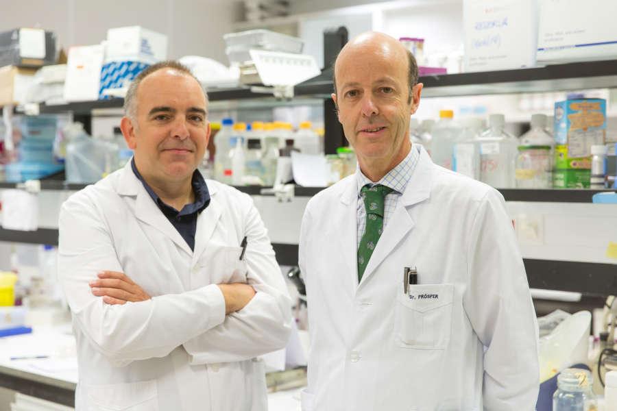 Un nuevo tratamiento remite el cáncer de vejiga en ratones