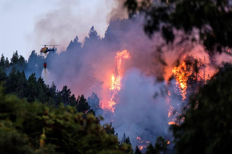 Más de 6.000 hectáreas quemadas y 9.000 evacuados en el fuego de Gran Canaria